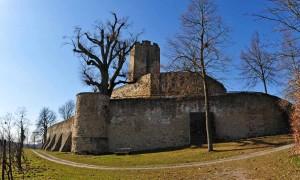 Burg Steinsberg im Herbst