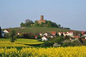 Gesamtansicht Burg Steinsberg